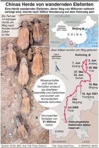NATURE: China's Herde wandernder Elefanten infographic