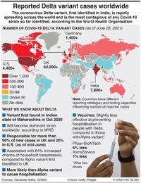 HEALTH: Covid-19 Delta variant cases infographic