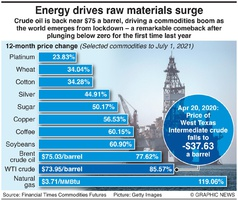 BUSINESS: Commodities supercycle infographic
