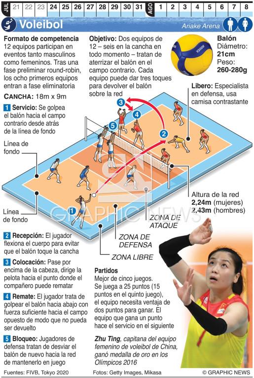 Voleibol Olímpico infographic