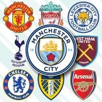 SOCCER: English Premier League crests 2021-22 infographic