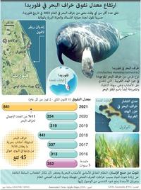 طبيعة: ارتفاع معدل نفوق خراف البحر في فلوريدا infographic