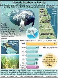 NATUR: In Florida steigt Manatis Todesrate infographic