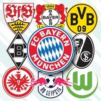SOCCER: German Bundesliga crests 2021-22 infographic