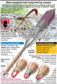 HEALTH: New surgical tool inspired by wasps infographic