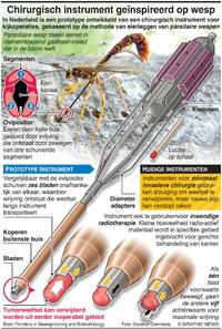 GEZONDHEID: Nieuw chirurgisch instrument geïnspireerd op wespen infographic