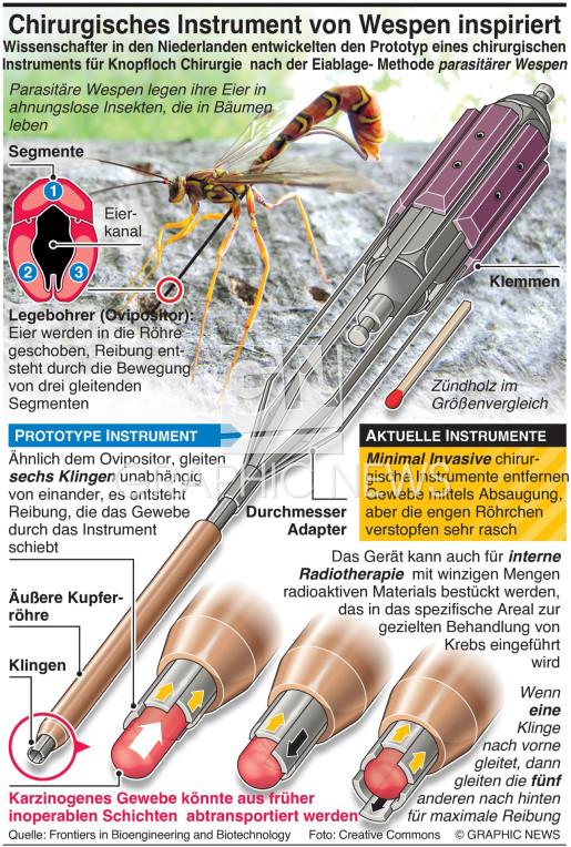 Neues chirurgisches Instrument von Wespen inspiriert infographic
