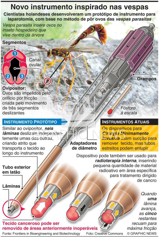 Novo instrumento cirúrgico inspirado nas vespas infographic
