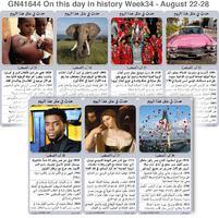 تاريخ: حدث في مثل هذا اليوم - 22 - 28 آب - الأسبوع 34 infographic