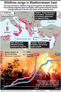 DISASTERS: Mediterranean wildfires infographic