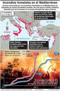 DESASTRES: Incendios forestales en el Mediterráneo infographic