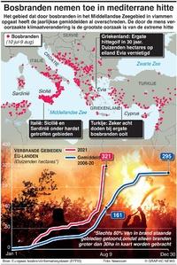 RAMPEN: Mediterrane bosbranden infographic