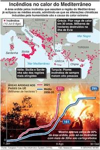 DESASTRES: Incêndios no Mediterrâneo infographic
