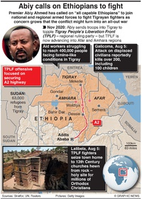 CONFLICT: Ethiopia PM urges civilians to join army infographic