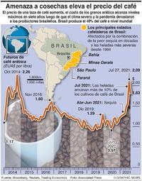 NEGOCIOS: Crisis cafetalera en Brasil infographic
