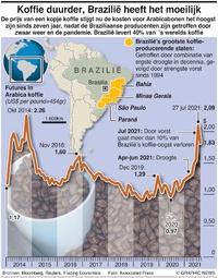 BUSINESS: Braziliaanse koffiecrisis infographic