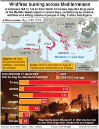 DISASTERS: Wildfires burning across Mediterranean infographic