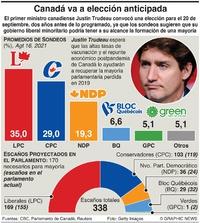 POLÍTICA: Sondeo electoral en Canadá infographic