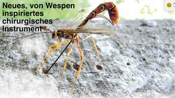 GESUNDHEIT: Neues chirurgisches Instrument von Wespen inspiriert infographic