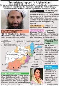 MILITÄR: Afghanische Terroristengruppen infographic