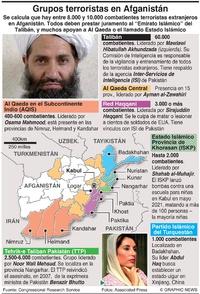 EJÉRCITOS: Grupos terroristas afganos  infographic