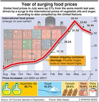 BUSINESS: Global food prices infographic