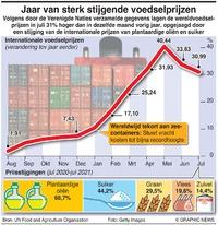 BUSINESS: Mondiale voedselprijzen infographic