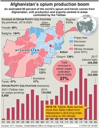 AFGHANISTAN: Opium production boom infographic
