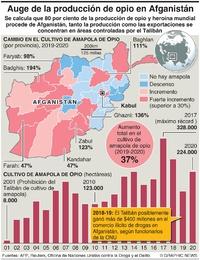 AFGANISTÁN: Auge en la producción de opio infographic