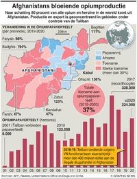 AFGHANISTAN: Bloeiende opiumproductie infographic