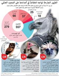 بيئة: الطيور الجارحة تواجه انخفاضاً في أعدادها على الصعيد العالمي infographic