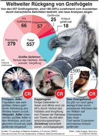 UMWELT: Rückgang der großen Greifvögel infographic