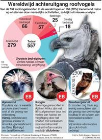 MILIEU: Wereldwijde achteruitgang roofvogels infographic