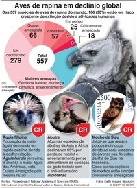 AMBIENTE: Aves de rapina em declínio global infographic