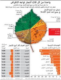 بيئة: واحدة من كل ثلاث أشجار تواجه الانقراض infographic