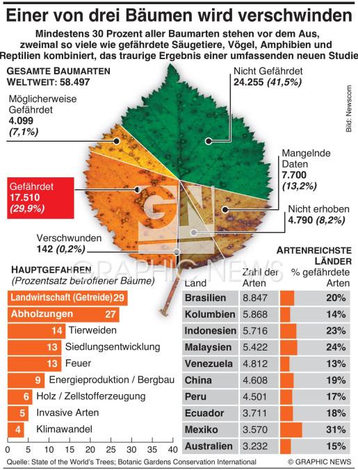 Baumsterben infographic