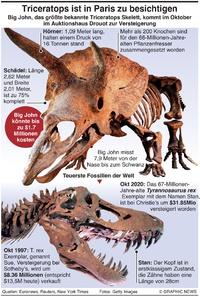 WIRTSCHAFT: Größter Triceratops der Welt infographic