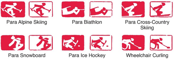 BEIJING 2022: Paralympic pictograms infographic