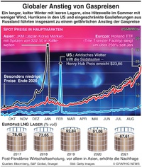 ENERGIE: Erdgaspreise auf Rekordniveau infographic