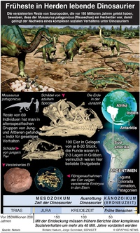 WISSENSCHAFT: Früheste Dinosaurierherden dinosaurs(EMBARGOED Thursday 16:00BST) infographic