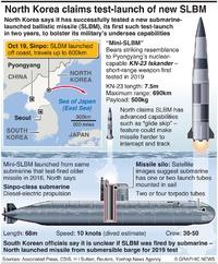 NORTH KOREA: Test launch of mini-SLBM infographic