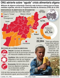 AFGANISTÁN: La ONU advierte sobre crisis alimentaria aguda infographic