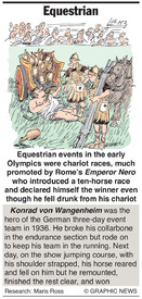 Equestrian infographic