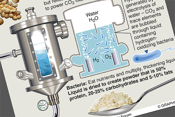 Wonder food made by chemosynthesis