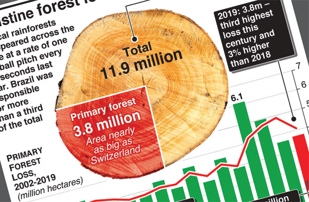 Pristine forest loss continues unabated