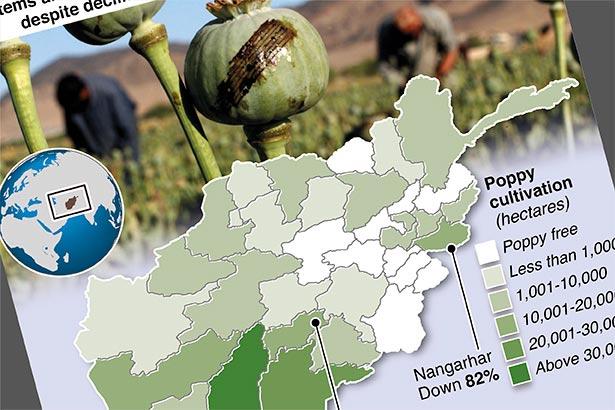 Solar panels boost Afghan poppy crop